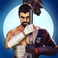 Shadow Ninja warrior